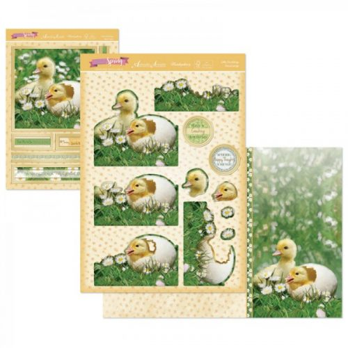 Hunkydory First Signs Of Spring DecoLarge Topper set Little Ducklings